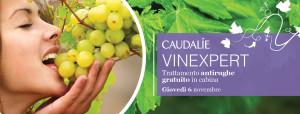 Caudalìe Vinexpert, castellaneta